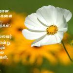 குதர்க்கமான விமர்சனத்தை சட்டை செய்யாதீர்கள் (கட்டுரை)