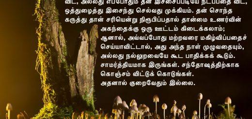 சந்தோஷத்திற்காக விட்டுக் கொடுங்கள்